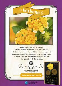 The Memory Garden, book review