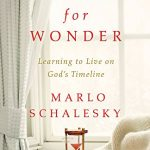 Waiting for Wonder by Marlo Schalesky | featured book + giveaway