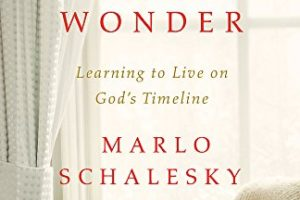 Waiting for Wonder by Marlo Schalesky | book review + giveaway