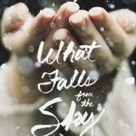 What Falls From the Sky by Esther Emory | book review