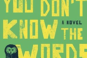 Hum If You Don't Know the Words by Bianca Marais | book review